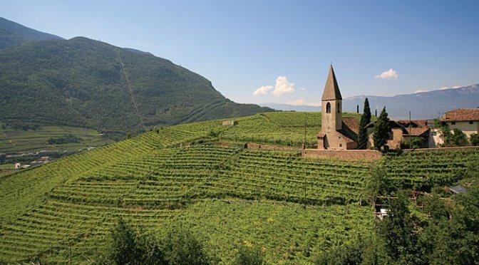 Alto Adige d'autore: Cantina di Bolzano