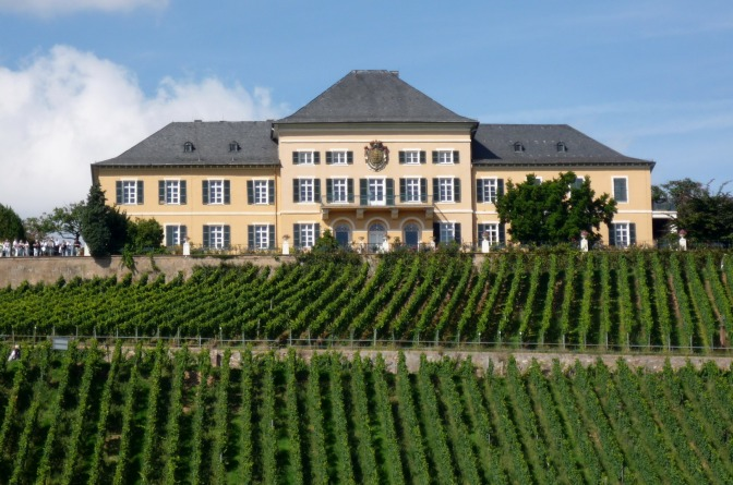 La melodia del Riesling di Schloss Johannisberg
