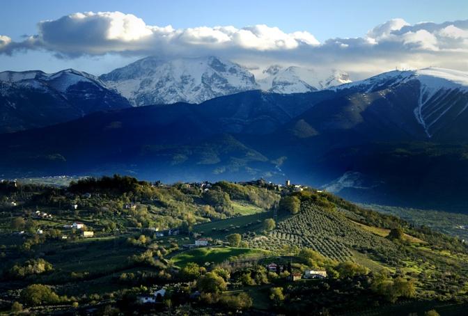 Ammalianti calici d'Abruzzo